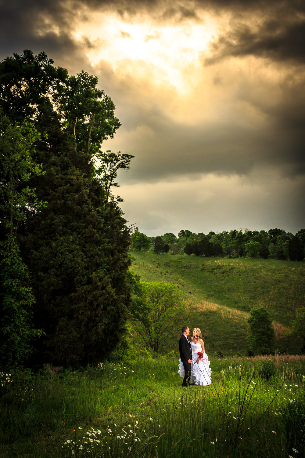 25-acres-wildflower-fields-wedding.jpg