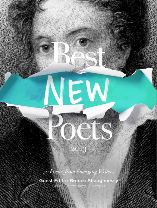 BNP2013cover.png