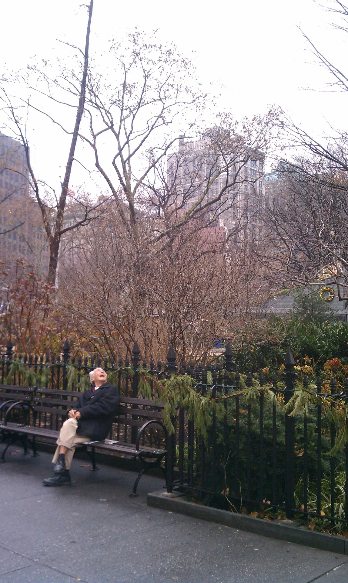 This man made my morning. He was sitting silently on a bench outside of Madison Square Park as I came walking from the 6. He saw a flurry of birds fly overhead - and lifted his head to see the commotion. He looked so enthralled, I had to steal a photo from across the street.