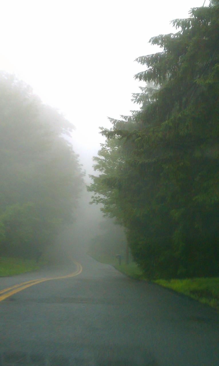 Misty road…