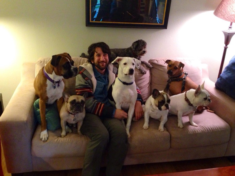 Josh couch dogs.jpg