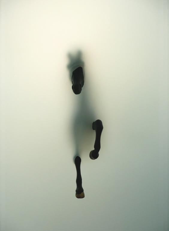 saatchionline :      Subversion  Digital Photography by Miriam Sweeney  Original:  $3,300.00