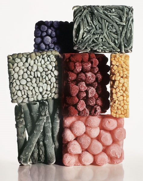 "christopherschreck :     ""Frozen Vegetables"" - Irving Penn (1977)"