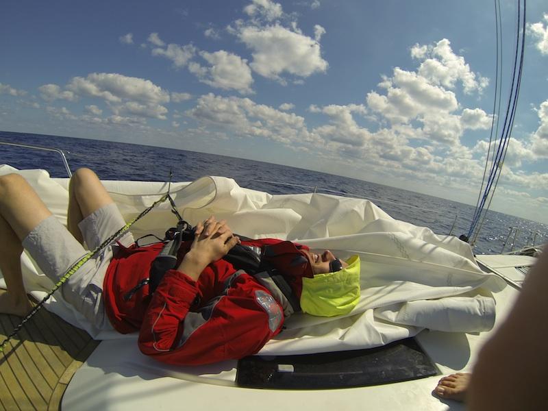 staus sail.jpg