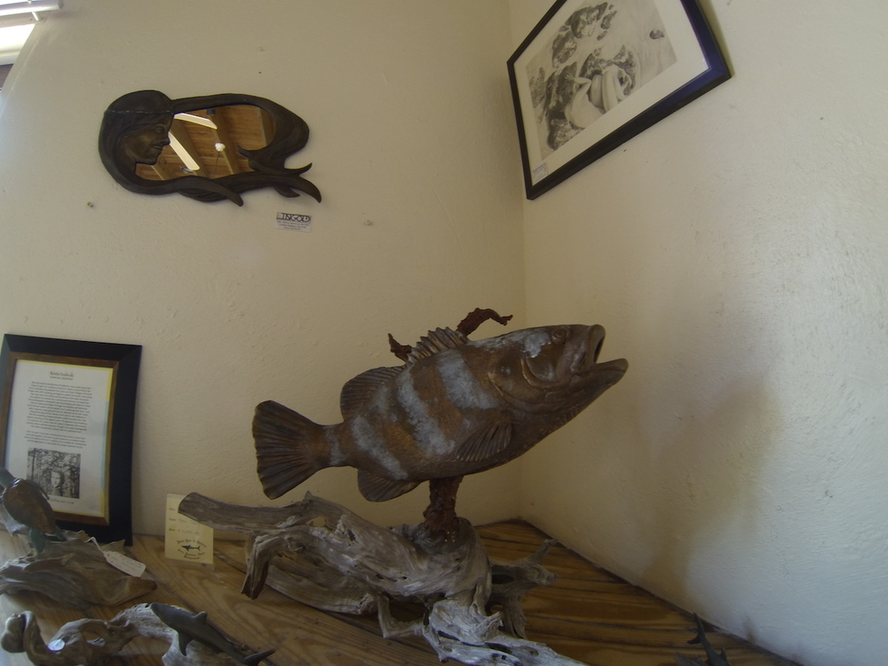 Grouper that was selling for something like $12,000.