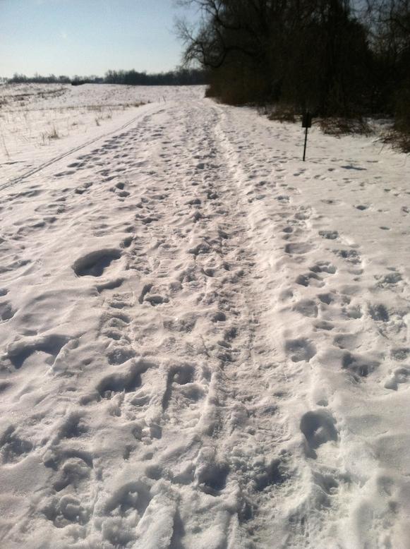Inte det lättaste att springa på den här promenadvägen...