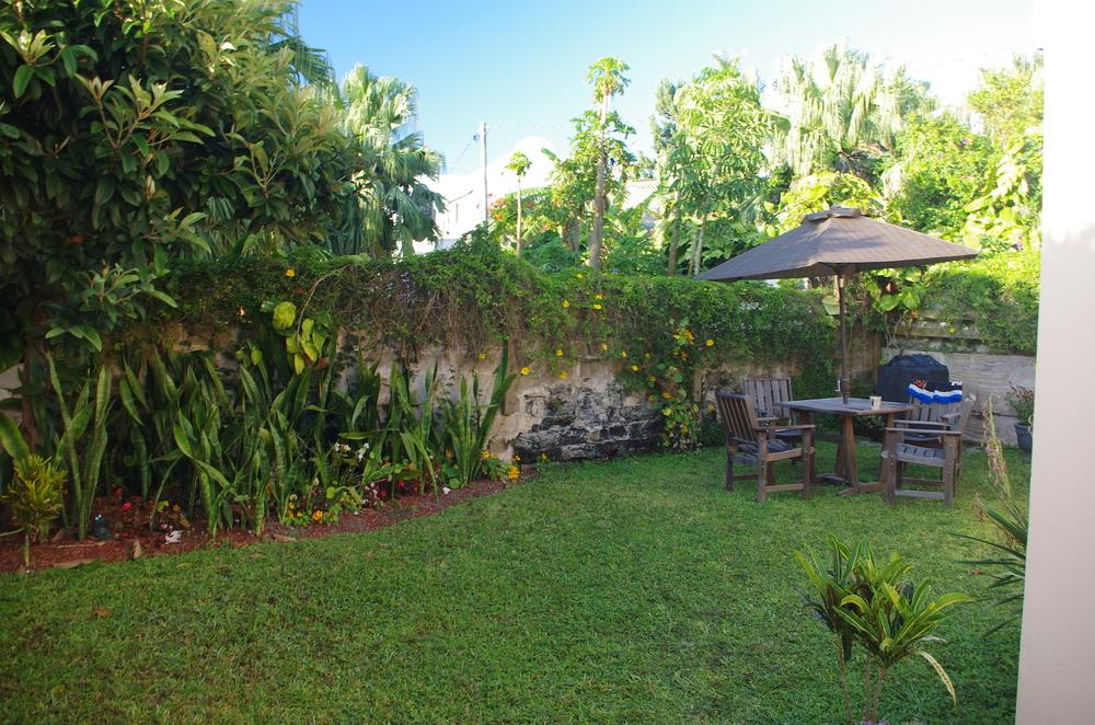 Trädgården bakom vårt hus