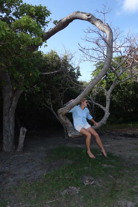 Härligt träd, nästan som en gunga! :)