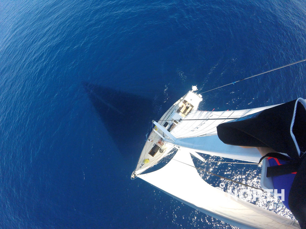 Photo by Liz from the top of the mast