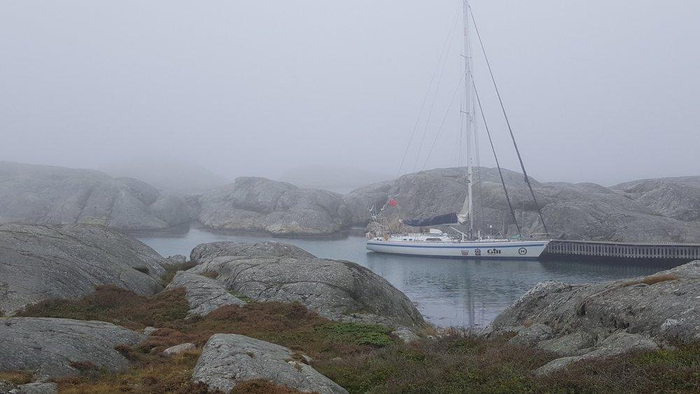 Hrimfare at Väderöarna