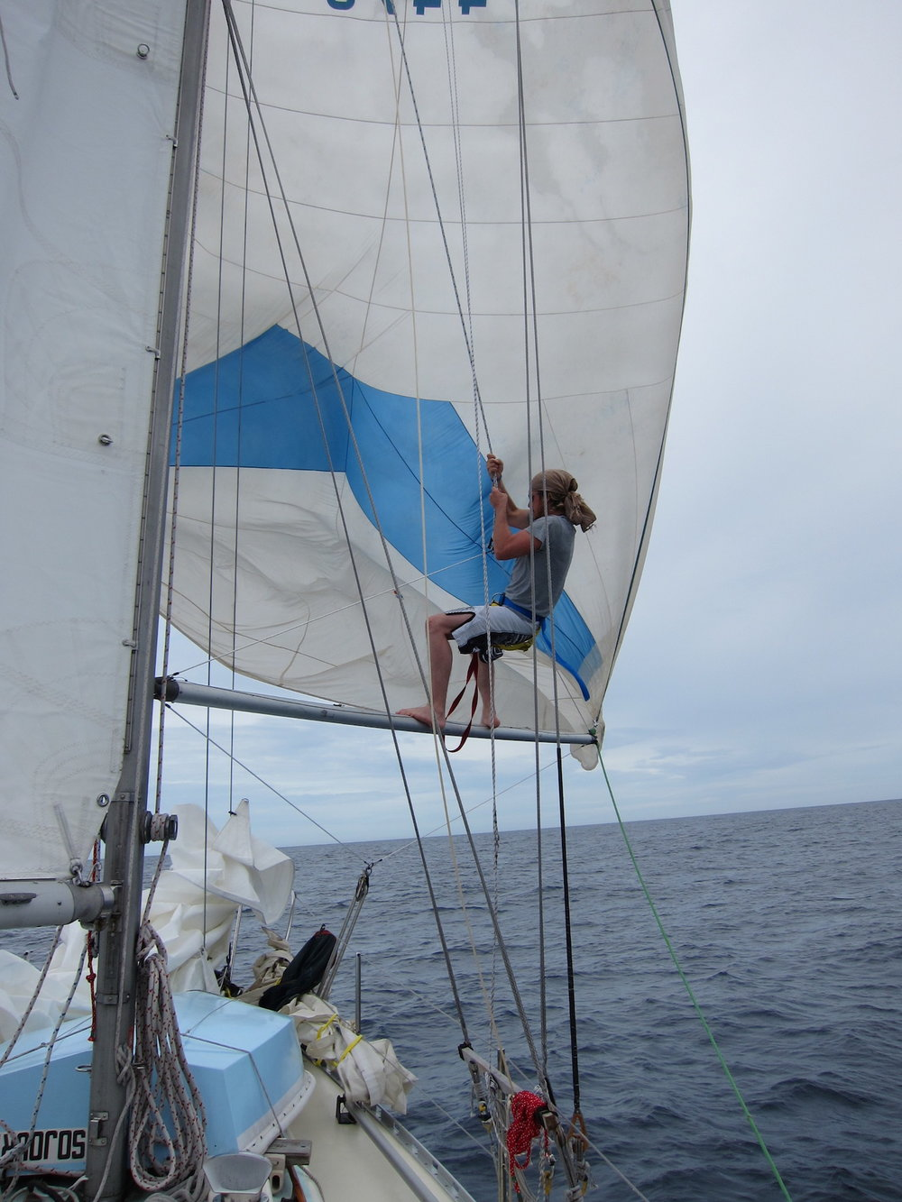 Spinnaker sailing in the middle of the Atlantic
