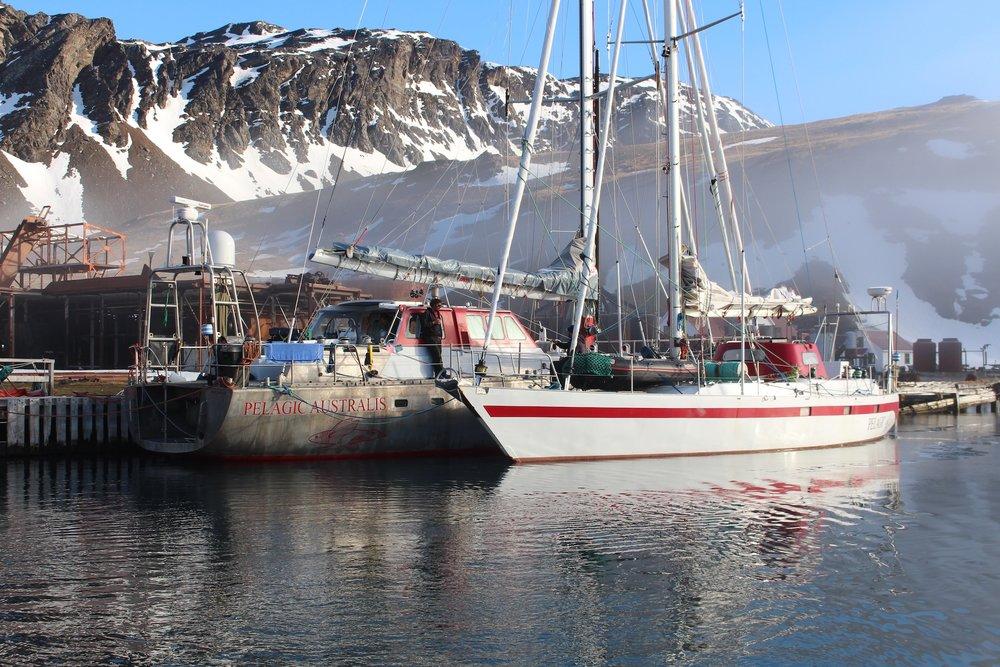 Pelagic fleet at Grytviken South Georgia // #OntheWindPodcast w. Skip Novak, #210 // 59-north.com