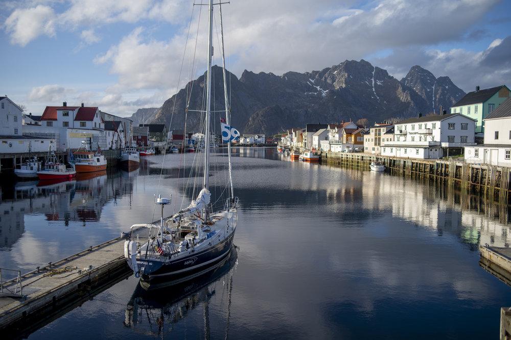 Isbjorn in Henningsvær, our first Lofoten village.