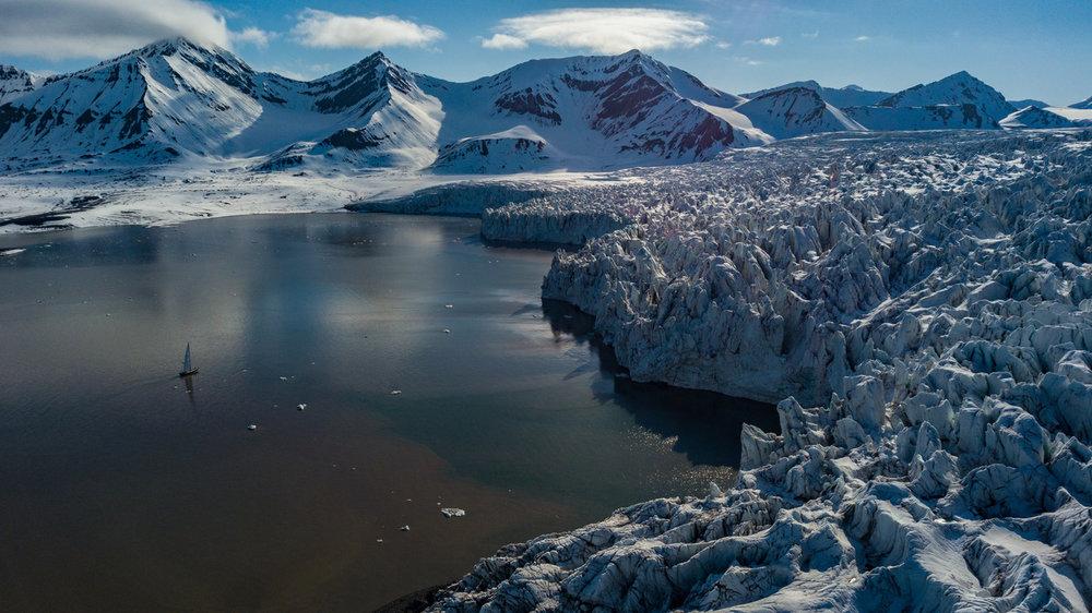 Isbjorn at Ymerbukta glacier