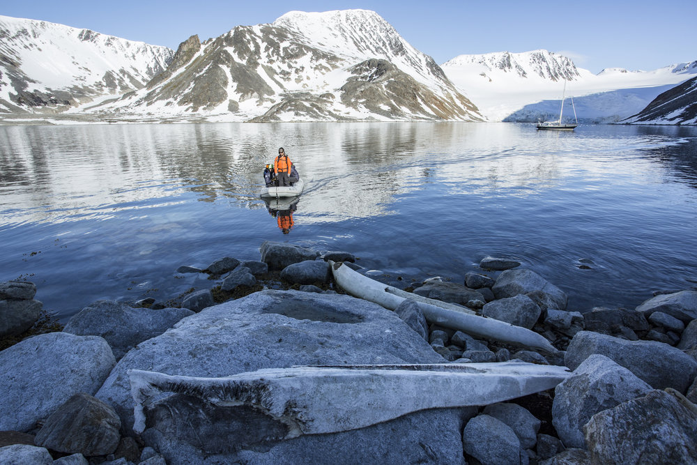 Isbjorn's anchorage on a sunnier day in front of the glacier. We moored the dinghy to these whale bones to explore in the hills above the boat.