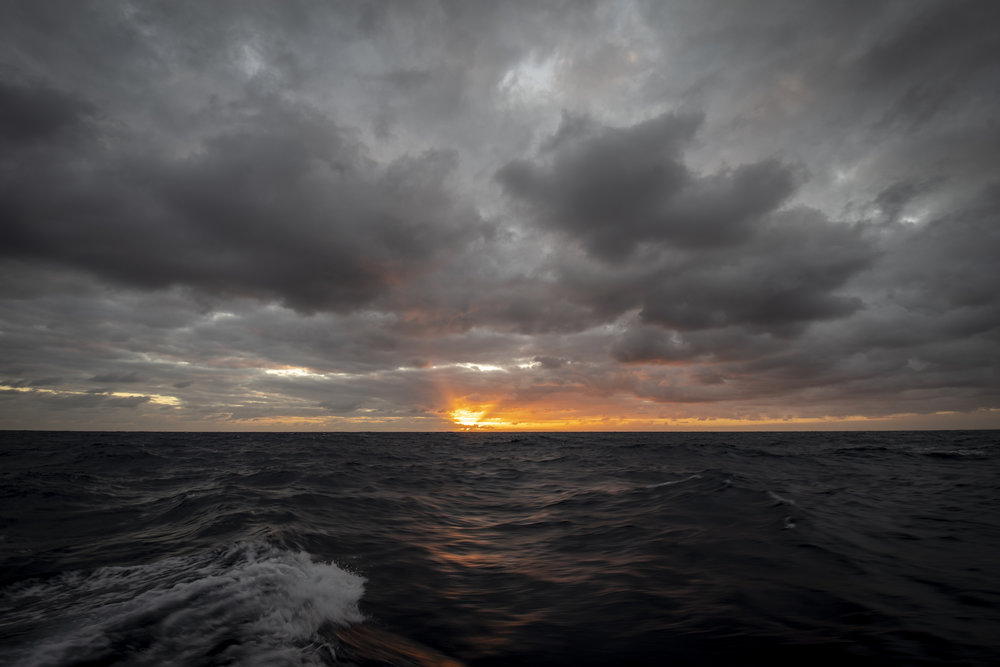 19.01.22_Dawn Breaking.jpg