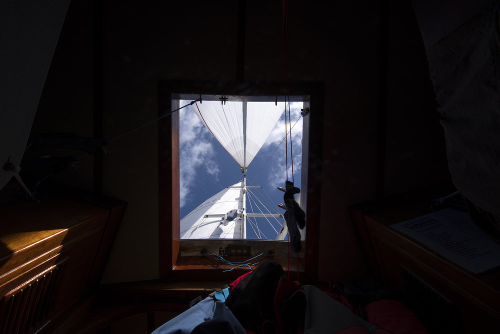 View from the forepeak cabin under spinnaker. Not a bad place to nap on a nice downwind day!
