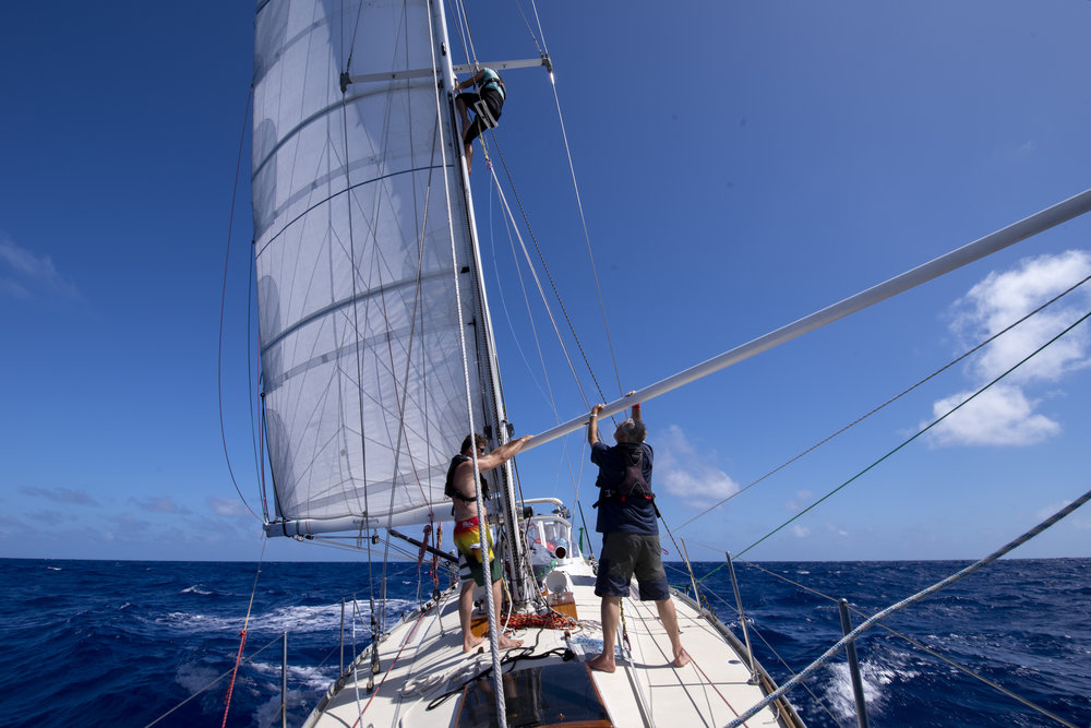 Mia in the rigging, the first time she went aloft at sea.
