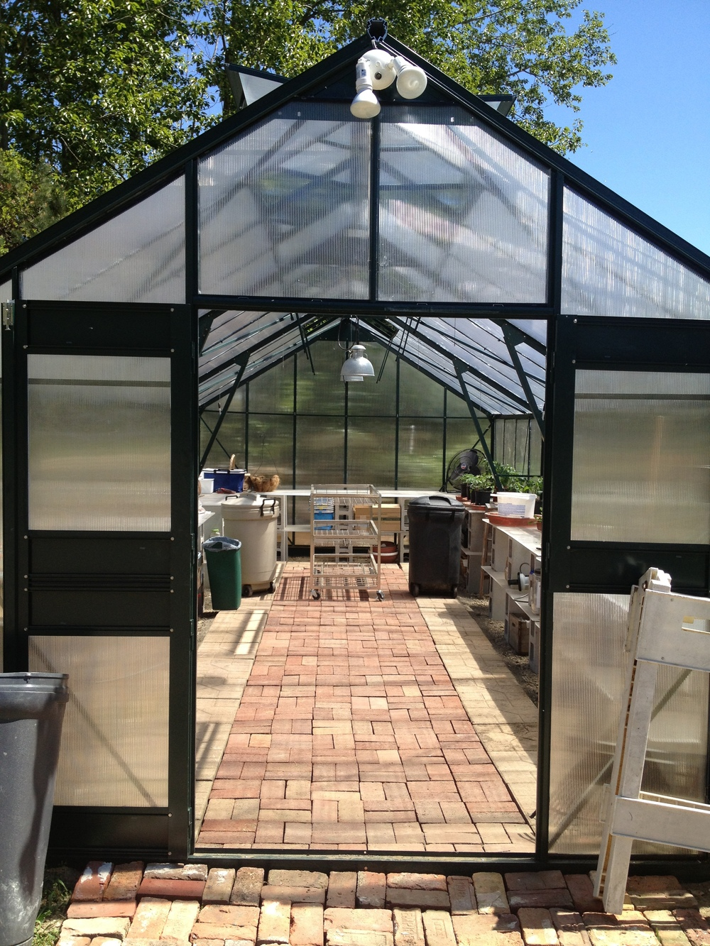 The new greenhouse at its finest. Ready to get packed with seedlings :)