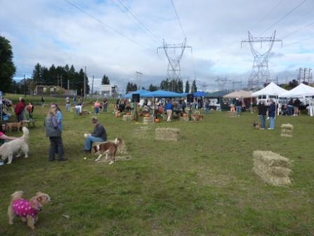 dogpaw dogtoberfest 2011 002.jpg