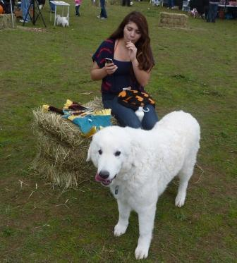 dogpaw dogtoberfest 2011 032.jpg