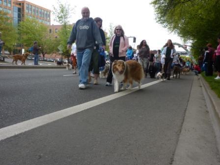2011 doggie dash 032.jpg