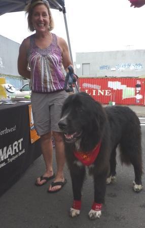 dogtoberfest '11 062.jpg