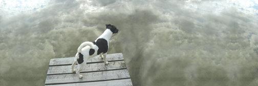 DogPier.jpg