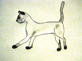 siamese cat drawing.jpg
