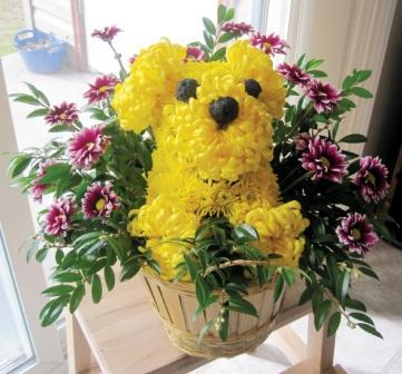 Shine-Floral Dog.jpg