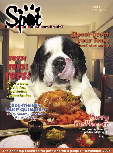 2005-11-Cover.JPG
