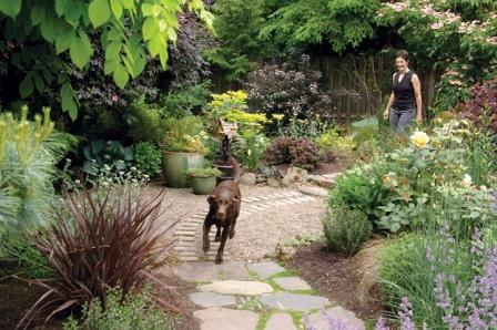 Creating a dog friendly water efficient yard spot magazine for Garden designs for dogs
