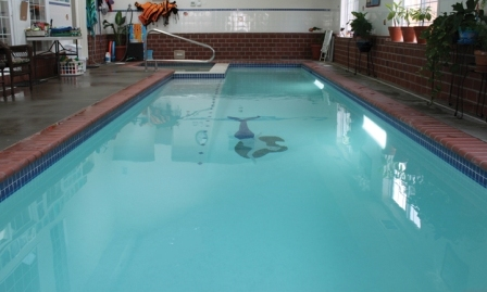 Paws Aquatics pool.jpg