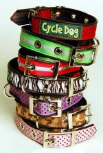 Cycle-Dog-Collar-Stack-sm1.jpg