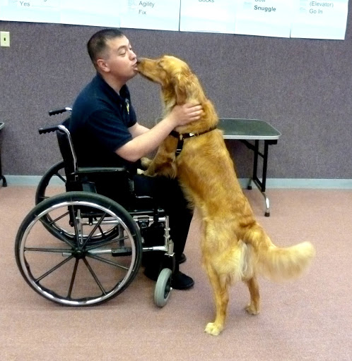 Lt. Nelson works with training a future service dog on how to work with people in wheelchairs.