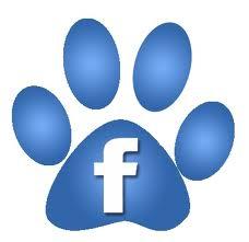 facebook_paw (1).jpg