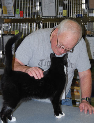 Kitty Kisses for volunteering © CAT