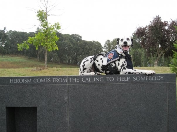 Cody at the Oregon Fallen Firefighters Memorial in Salem.  Photo: Amy LInder