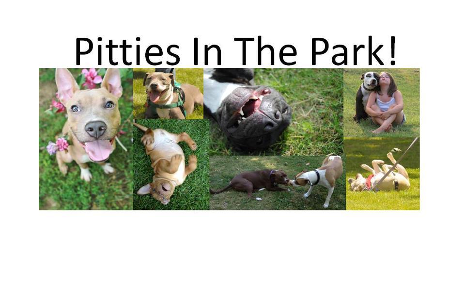 pitties_park.jpg
