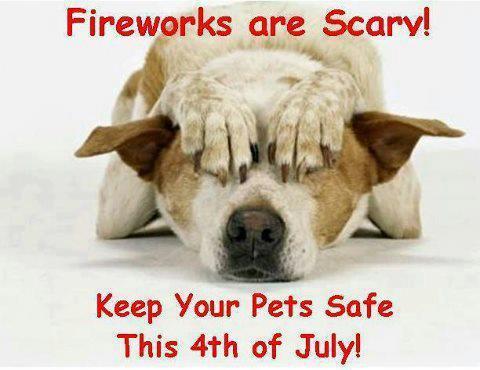 fireworks_scary.jpg