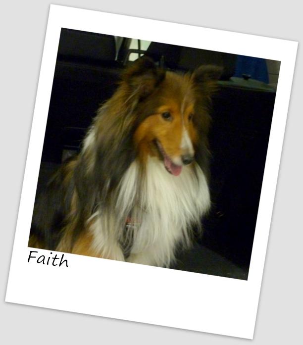 Faith2 (640x480).jpg