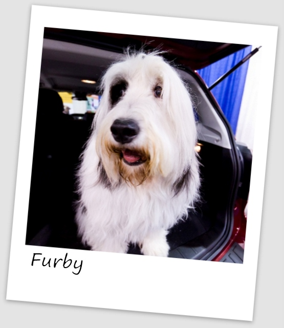 Furby5 (427x640).jpg