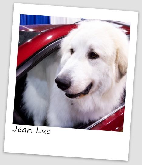 Jean-Luc5 (640x427).jpg