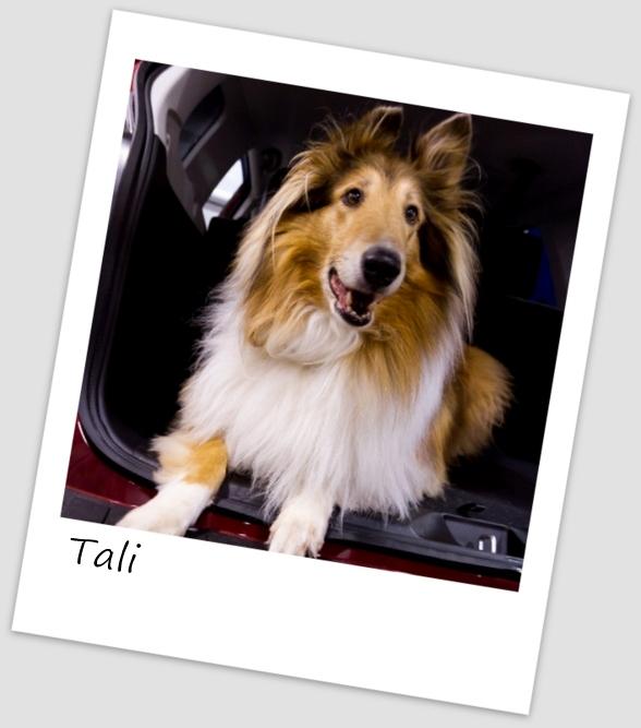 Tali2 (427x640).jpg
