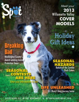 Our October/November Issue