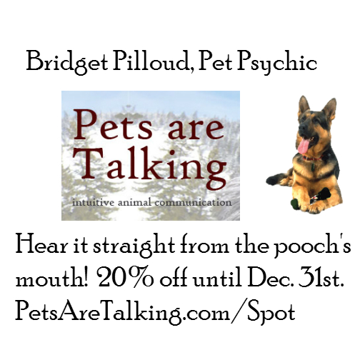 PetPsychic_giftguide.jpg