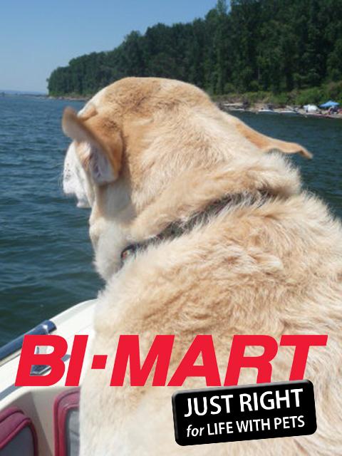 Bi-Mart-Web1.jpg