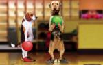 dogs_bowling-150x95.jpg