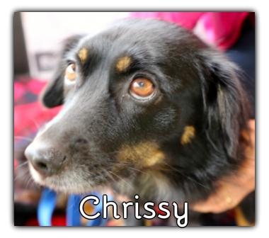 _Chrissy.jpg