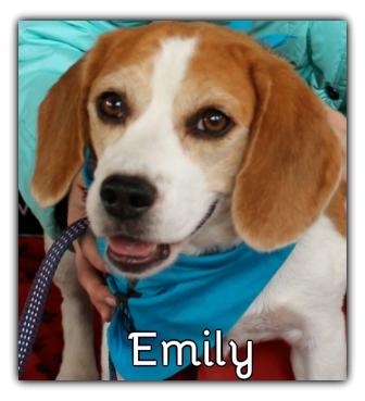 _Emily.jpg